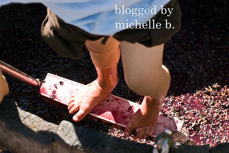 GrapeStomp-0264blog